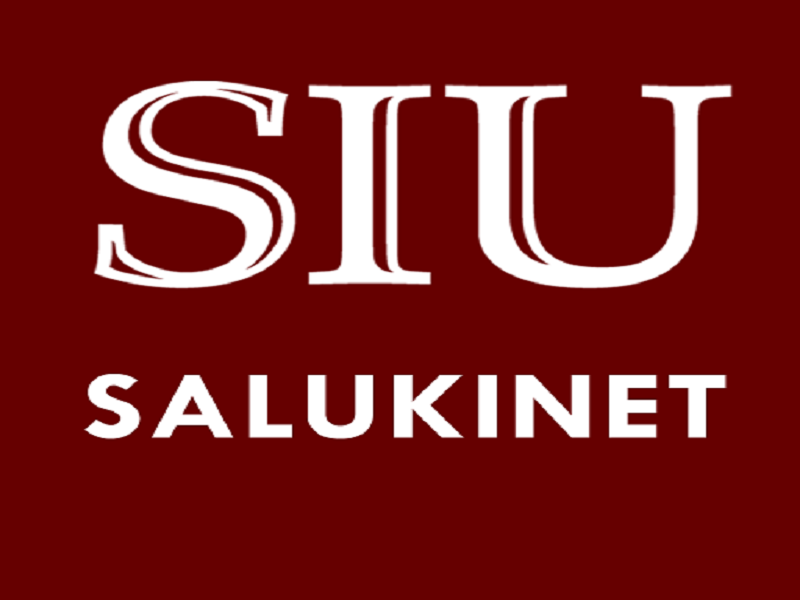 Salukinet