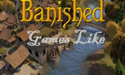 games like banished